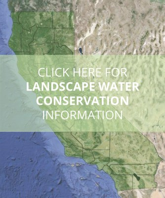 Click here for landscape water conservation information